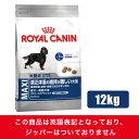 【正規品】【送料無料】ロイヤルカナン SHN マキシ・ステアライズド 12kg(52901156)