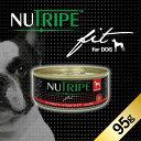 成犬用 ドッグフード NUTRIPE Fit ニュートライプ フィット ビーフ&グリーンラムトライプ 95g【smtb-k】【w3】