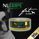 成犬用 ドッグフード NUTRIPE Fit ニュートライプ フィット チキン&グリーンラムトライプ 95g【smtb-k】【w3】