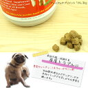 プレミアムサプリメント「IN」〜イン〜犬用 3kg【smtb-k】【w3】