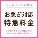 Express-option2