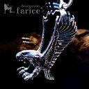 獲物を狙うイーグル(鷲) 鋭い爪&なびく翼(クロー&ウィング...