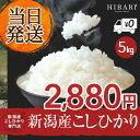 【送料無料 あす楽 新米】米 新潟産 コシヒカリ 5kg 送...