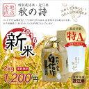 【新米】【送料無料】平成28年 滋賀県産 特別栽培米 秋の詩 2kg 近江米 白米 玄米【返品保証】