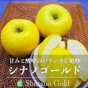 【送料無料】シナノゴールド(りんご)贈答用 約2kg(5〜6玉)長野県・高山村産