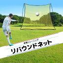 【店内全品P5倍 25日20時〜1時59分】 トレーニング サッカー 野球 トレーニングネット