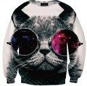 猫 猫柄 プルオーバー スウェット トレーナー トップス メンズ 長袖 部屋着 レジャー かわいい ユニーク 個性的 ねこ ネコ 雑貨 グッズ プレゼント