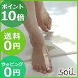 soil/ソイル バスマット ライト ★ラッピング無料・送料無料・ポイント10倍★ BATH MAT light 珪藻土の速乾バスマット B246