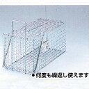角型 捕獲器ジャンボL型 外バネ式 J-02 何度も繰り返し使えます!イタチ・ヌートリア・アライグマ等の害獣に大きなねずみも捕獲できます!
