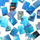 【ポイント10倍】KIKKERLANDトランプ・アニマル3Dカード【10P03Dec16】
