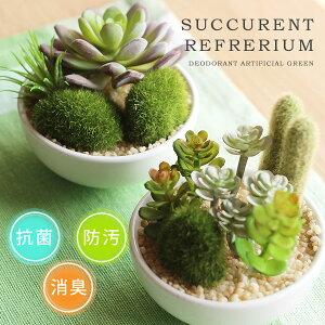 サキュレントリフレリウム アーティフィシャルグリーン デオドラント