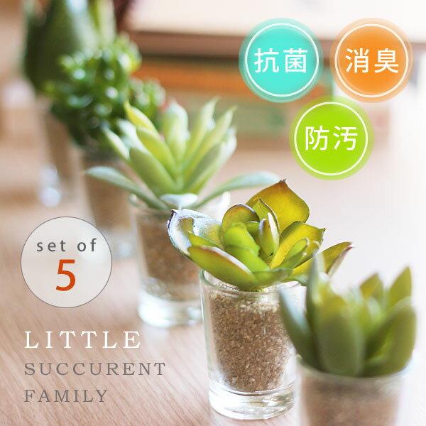 リトルサキュレントファミリー消臭アーティフィシャルグリーン消臭グッズ空気清浄造花観葉植物デオドラント