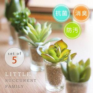 リトルサキュレントファミリー アーティフィシャルグリーン デオドラント 多肉植物