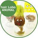 【最大500円クーポン配布中】hair LABO ANIMAL ヘアラボ アニマル
