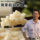 無肥料栽培 発芽前玄米5Kg|福岡県産 夢つくし0.5分づき米筑後久保農園