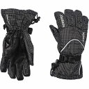 スウィックス Swix レディース 手袋・グローブ【Trekker Gore-Tex Gloves - Waterproof, Insulated】Black/White