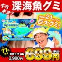 ¥2980(税抜) さかなクンの深海魚研究所 {子供会 景品 お祭り くじ引き 縁日 実験 グミ メガマウス ダイオウイカ}【特価玩具】