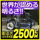 日本未発売 米国 EU輸出用 軍事LEDヘッドライト HL-006 Cree XM-L T6 1灯搭載 明るさ2500lm相当 照射距離800m以上 防水 led 強力 懐中電灯