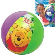 58025 プービーチボール ( ME-7608 / CAG10252925 )【 INTEX 】【プール ビニールプール 浮き輪 ビーチボール 58025 インテックス 】【QBG41】