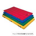 カラー体操マット(90X180X5cm/レッド) D-4630R (JS199138)【送料区分:別途】【QBI25】