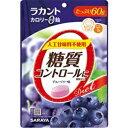 【あす楽対応】【サラヤ】 ラカントカロリーゼロ飴 60g ブルーベリー 【フード・飲料