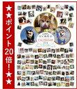 � ワン� ホー 平成最後のいぬ年カレン� ー2018 中型・大型犬