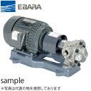 エバラ 灯油用歯車ポンプ 三相 200V 20mm 20GPA5.4A 直結形 6極
