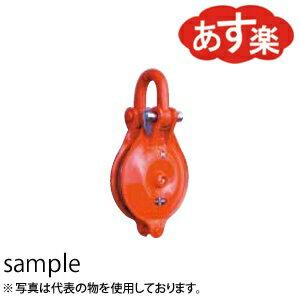 TAIYO-240-846