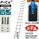 ピカ(Pica) アルミ製伸縮はしご PTH-420CB キャリーバック付 【在庫有り】【あす楽】