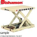 ビシャモン(スギヤス) 電動ネジ駆動式リフト バリオスクリュー1段式 XS020512-B 最大積載能力:200kg [配送制限商品]