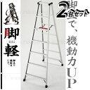 【2台セット 限定】 長谷川工業 アルミ製軽量専用脚立 脚軽(ASHIGARU) RZ2.0-21(7段)2台セット [大型・重量物] ご購入前確認品