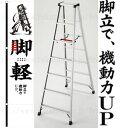 長谷川工業 アルミ製軽量専用脚立 脚軽(ASHIGARU) RZ2.0-21(7段) [大型・重量物] ご購入前確認品