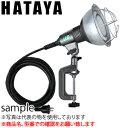 ハタヤ 防雨型LED作業灯 ビームランプタイプ RGL-5 LED投光器【在庫有り】【あす楽】