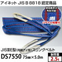 アイネット DS7550 両端アイ型スリングベルト 75mm×5.0m (JIS-3E型) 耐荷重:2.5t 両面仕様