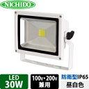 日動工業 LEDエコナイター LEN-30D-ES-W(白) 30W 昼白色 5000K【在庫有り】【あす楽】