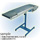 寺内製作所 ミニラビットコンベヤ(トラフ式タイプ) BCT-300Wx3000L-B 受注生産品に付き代引不可