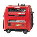 やまびこ(新ダイワ) ガソリンエンジン溶接機 EGW190M-IST 190A 個人宅配不可