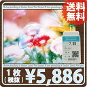 【処方箋不要】送料無料!ニチコン Ex-UV ×1枚【ハード】【O2】