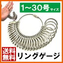 1号〜30号まで対応 指輪 リング サイズゲージ プロ仕様 ...