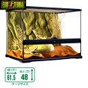 ショッピングテラリウム GEX グラステラリウム   6045 爬虫類 飼育 ケージ ガラスケージ 【水槽/熱帯魚/観賞魚/飼育】【生体】【通販/販売】【アクアリウム/あくありうむ】