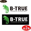 エバーグリーン B-TRUE ボートディカル L (ステッカー)