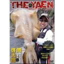 アピス THE YAEN 攻めのアオリイカ テクニカルヤエン 岡啓太郎 【DVD】