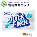 保冷剤 急速冷却パック 熱中症対策 クイックフリーズ 10個セット