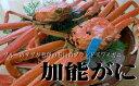 石川 ズワイ蟹 通販