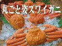 【訳あり】ボリュームたっぷり大きなズワイガニ丸ごと4杯 - 竹本商店
