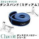 チャコット ダンスバンド(ミディアム)【当店在庫品】 [Chacott]