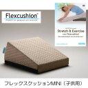 フレックスクッションMINI (子供用・キッズ向け)+DVDセット 〔ストレッチ補助クッション〕[サンテプラス]