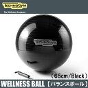 テクノジム バランスボール(65cm) WELLNESS B...