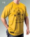【速乾性・コンプレッション】GOLD'S GYM(ゴールドジム)ゴールズドライシャツ(オリジナル)【02P05Nov16】