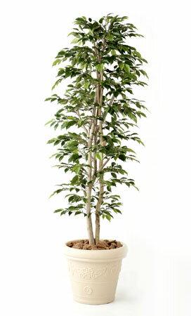 無光触媒加工 人工植物 ナターシャ・ニチーダ 1.0m 当店オリジナルのメンテナンス簡単・人工樹木。